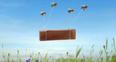 Briqueteries VANDERSANDEN : Eco-Plaquettes de parement