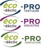 Offres ECO DECLIC pro
