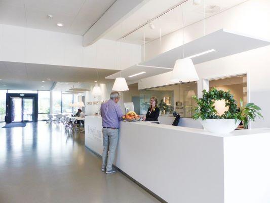 Ecophon Solo™ Rectangle Line - Plafonds acoustiques